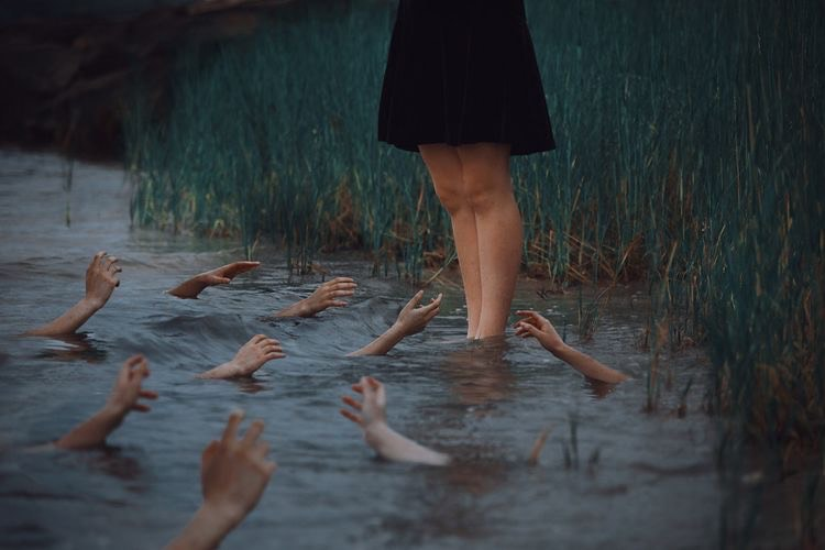 lauren zaknoun on flickr